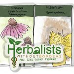 Herbalists Without Borders Meeting
