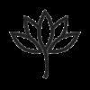 5667 - Lotus